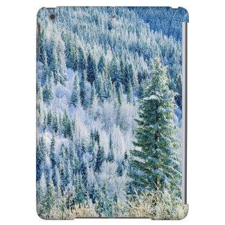 USA, Washington, Mt. Spokane State Park, Aspen