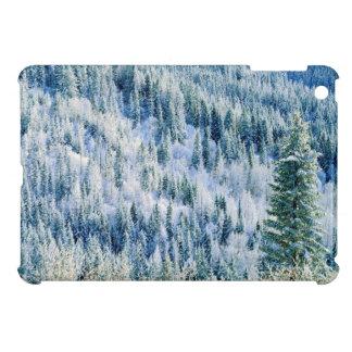 USA, Washington, Mt. Spokane State Park, Aspen 2 iPad Mini Cover