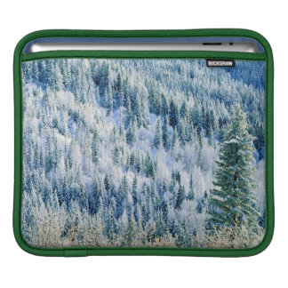 USA, Washington, Mt. Spokane State Park, Aspen 2 iPad Sleeve