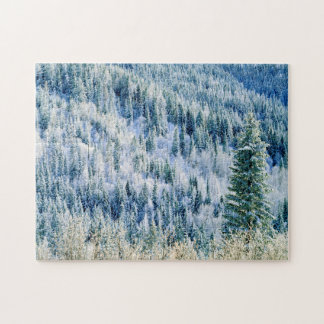 USA, Washington, Mt. Spokane State Park, Aspen 2 Jigsaw Puzzle