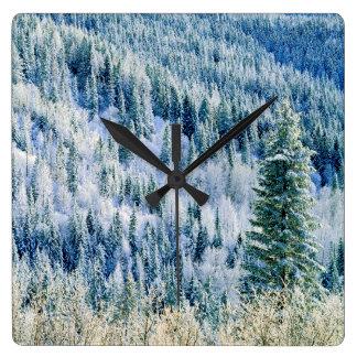 USA, Washington, Mt. Spokane State Park, Aspen 2 Square Wall Clock