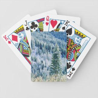 USA, Washington, Mt. Spokane State Park, Aspen Bicycle Playing Cards