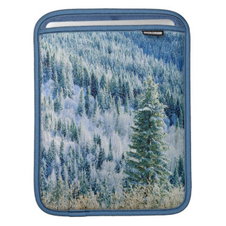 USA, Washington, Mt. Spokane State Park, Aspen iPad Sleeve
