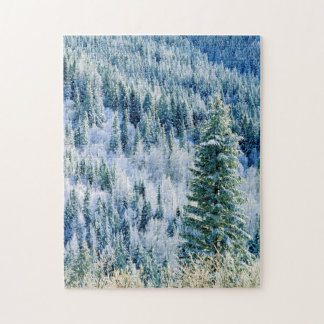 USA, Washington, Mt. Spokane State Park, Aspen Jigsaw Puzzle