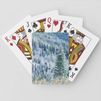 USA, Washington, Mt. Spokane State Park, Aspen Playing Cards