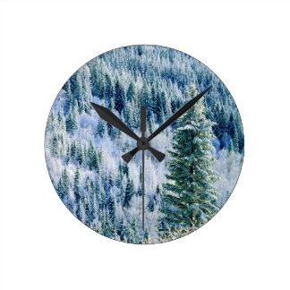 USA, Washington, Mt. Spokane State Park, Aspen Round Clock