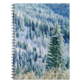 USA, Washington, Mt. Spokane State Park, Aspen Spiral Notebook