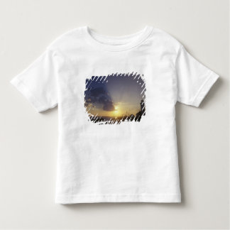 USA, Washington, near Port Townsend. Point Toddler T-Shirt