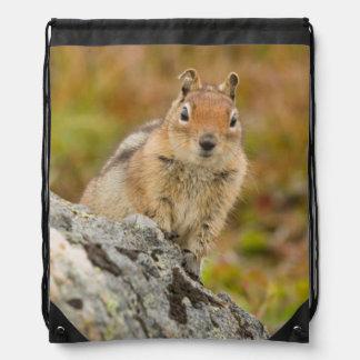 USA, Washington, North Cascades National Park 11 Drawstring Bag