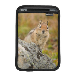 USA, Washington, North Cascades National Park 11 iPad Mini Sleeve