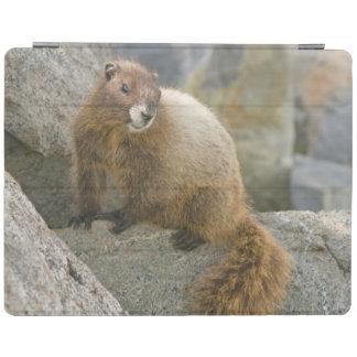 USA, Washington, North Cascades National Park 2 iPad Cover