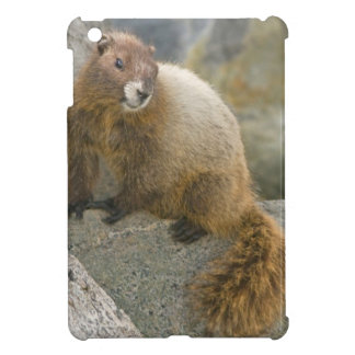 USA, Washington, North Cascades National Park 2 iPad Mini Cover