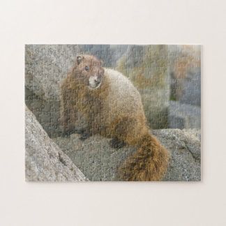 USA, Washington, North Cascades National Park 2 Jigsaw Puzzle