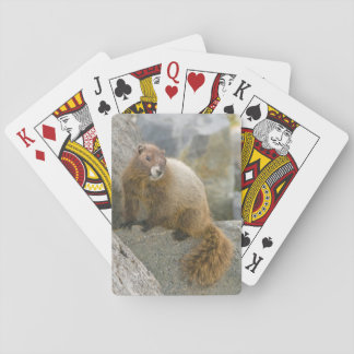 USA, Washington, North Cascades National Park 2 Playing Cards