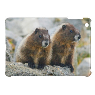 USA, Washington, North Cascades National Park 3 Cover For The iPad Mini