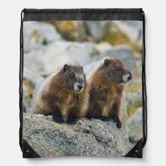 USA, Washington, North Cascades National Park 3 Drawstring Bag