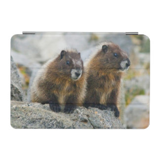 USA, Washington, North Cascades National Park 3 iPad Mini Cover