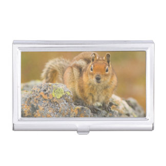 USA, Washington, North Cascades National Park 5 Business Card Holder