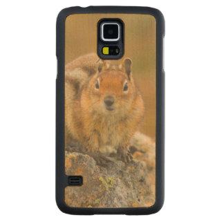 USA, Washington, North Cascades National Park 5 Carved Maple Galaxy S5 Case