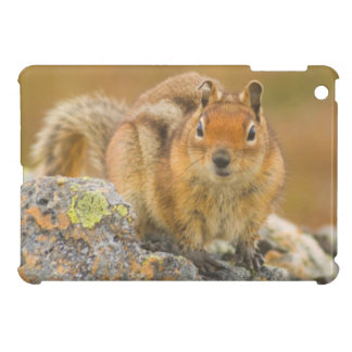 USA, Washington, North Cascades National Park 5 Case For The iPad Mini