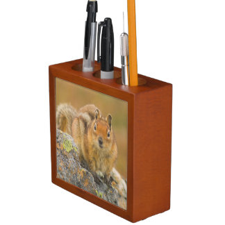 USA, Washington, North Cascades National Park 5 Desk Organiser