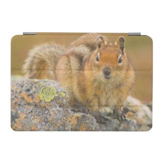 USA, Washington, North Cascades National Park 5 iPad Mini Cover
