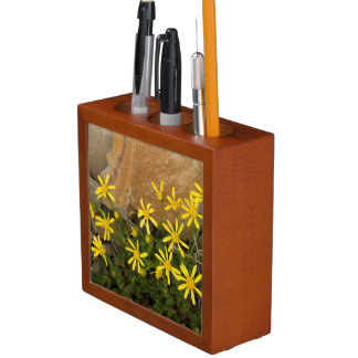 USA, Washington, North Cascades National Park 7 Desk Organiser