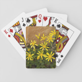 USA, Washington, North Cascades National Park 7 Playing Cards