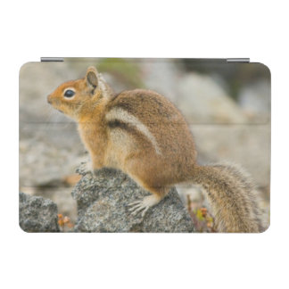 USA, Washington, North Cascades National Park 8 iPad Mini Cover