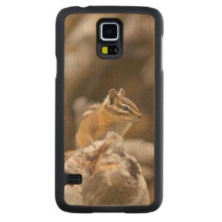 USA, Washington, North Cascades National Park 9 Carved Maple Galaxy S5 Case