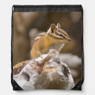 USA, Washington, North Cascades National Park 9 Drawstring Bag