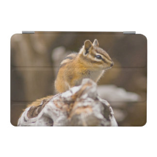 USA, Washington, North Cascades National Park 9 iPad Mini Cover
