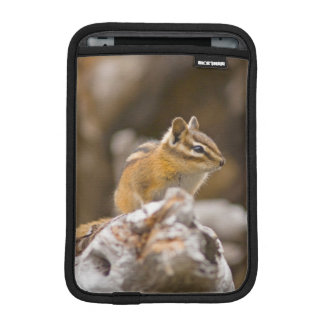 USA, Washington, North Cascades National Park 9 iPad Mini Sleeve