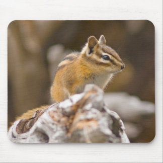 USA, Washington, North Cascades National Park 9 Mouse Mat