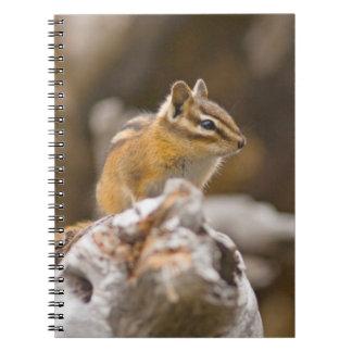 USA, Washington, North Cascades National Park 9 Spiral Notebook