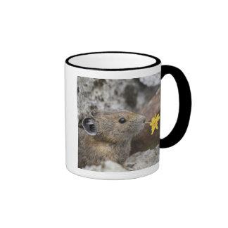 USA, Washington, North Cascades National Park, Coffee Mug