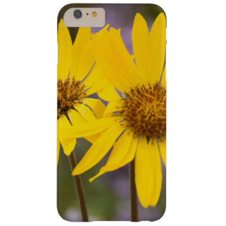 USA, Washington, Okanogan National Forest Barely There iPhone 6 Plus Case