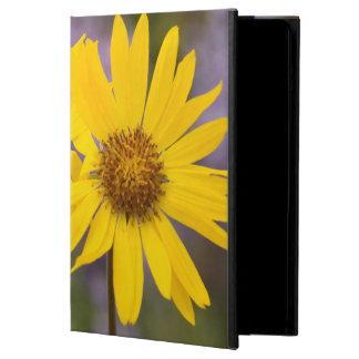 USA, Washington, Okanogan National Forest iPad Air Covers