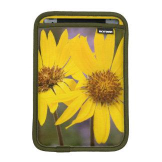 USA, Washington, Okanogan National Forest iPad Mini Sleeve