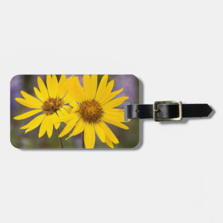 USA, Washington, Okanogan National Forest Luggage Tag