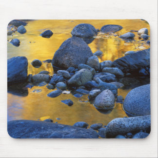 USA, Washington, Okanogan-Wenatchee National Mouse Mat