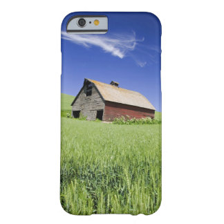 USA, Washington, Old Red Barn in the Spring Barely There iPhone 6 Case