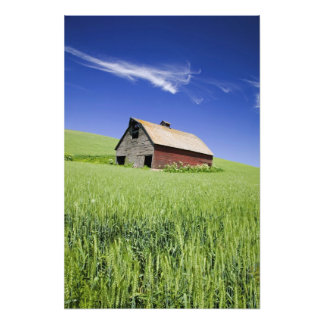 USA, Washington, Old Red Barn in the Spring Photo Print