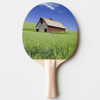 USA, Washington, Old Red Barn in the Spring Ping Pong Paddle
