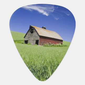 USA, Washington, Old Red Barn in the Spring Plectrum