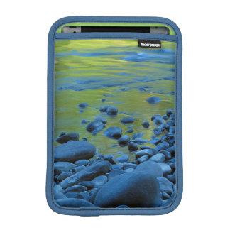 USA, Washington, Olympic National Park 4 iPad Mini Sleeve