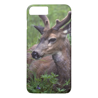 USA, Washington, Olympic National Park. Deer iPhone 8 Plus/7 Plus Case