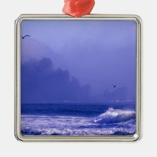 USA, Washington, Olympic National Park. Fog Christmas Ornament