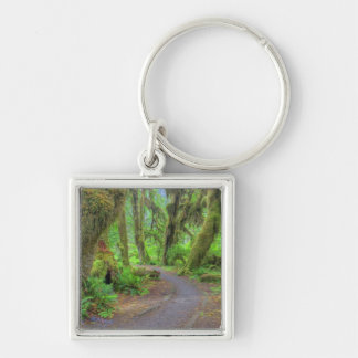 USA, Washington, Olympic National Park, Hoh 2 Key Ring