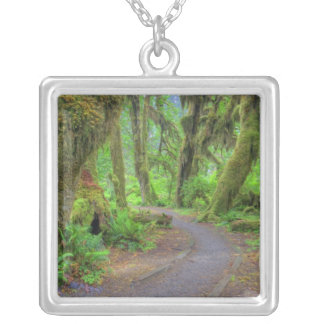 USA, Washington, Olympic National Park, Hoh 2 Silver Plated Necklace